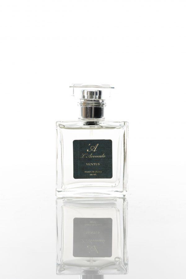 VENTUS Perfume -L\'Avvocato